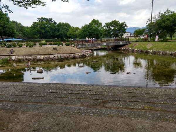 かじかの里公園池
